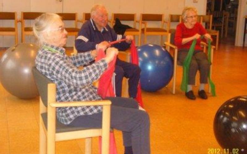 Træning på stole